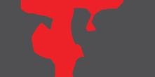 CVSS logo